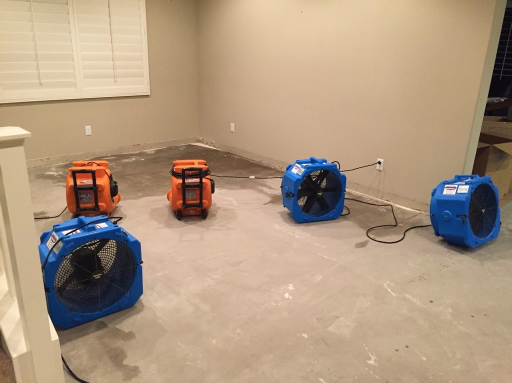 how to clean up water damage in a home